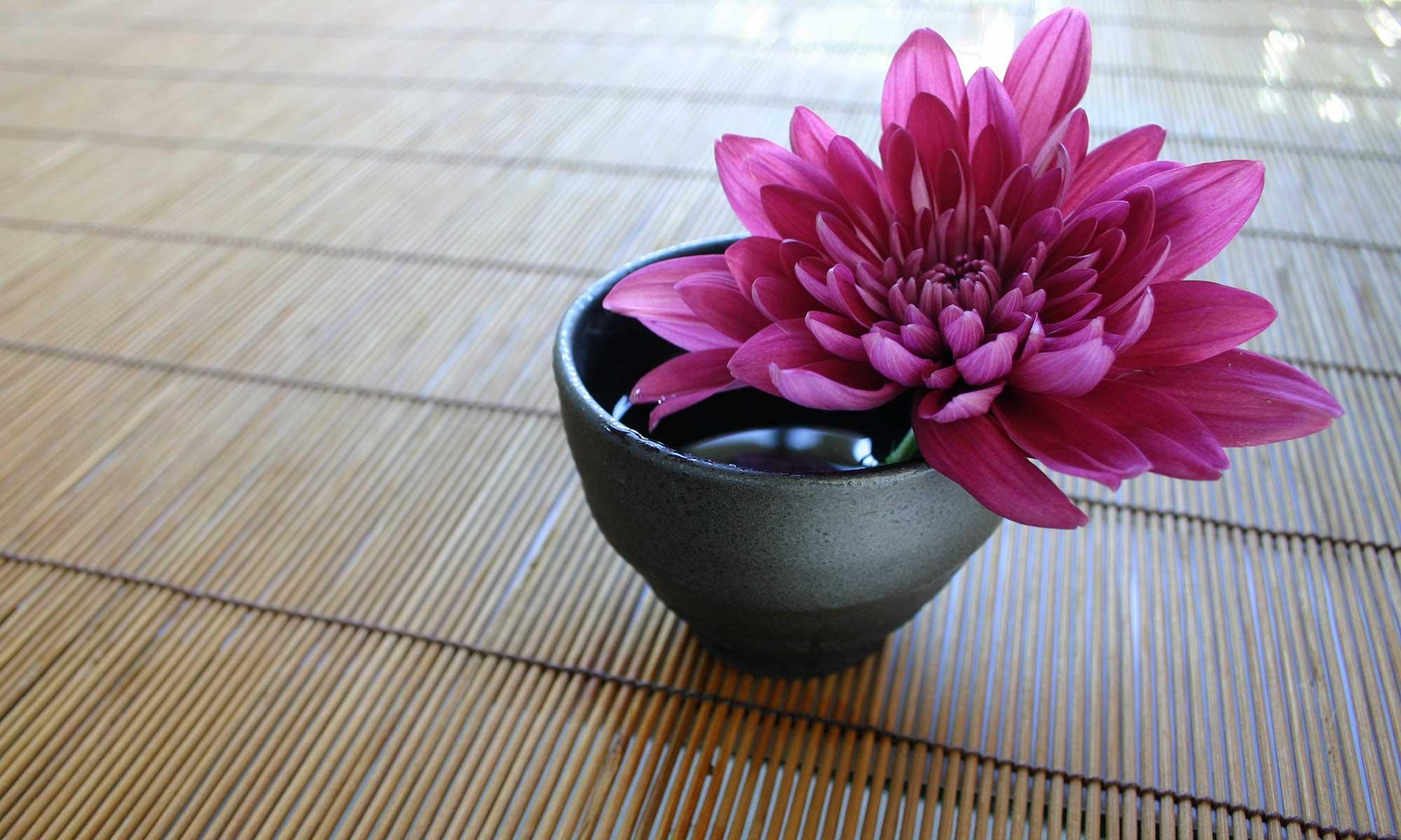 Zen and the Art of Website Maintenance